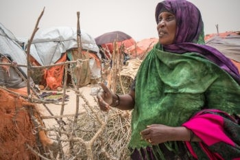 Co-ordination is crucial to tackle Somalian drought crisis